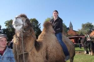 IMG_0409 Kamel und Sabine