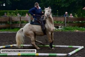 Speed-Rodeo-Reiten (31)