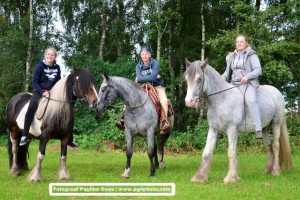 Speed-Rodeo-Reiten (37)