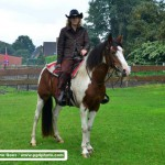 Speed-Rodeo-Reiten (38)